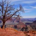 Le parc national Grand Canyon